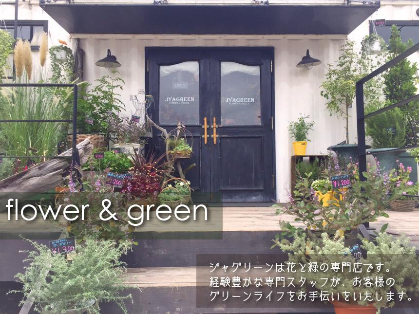 ブームス4号店は花と緑の専門店です
